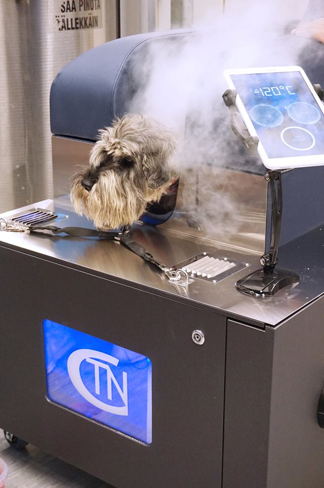 dog cryotherapy treatment in Sydney